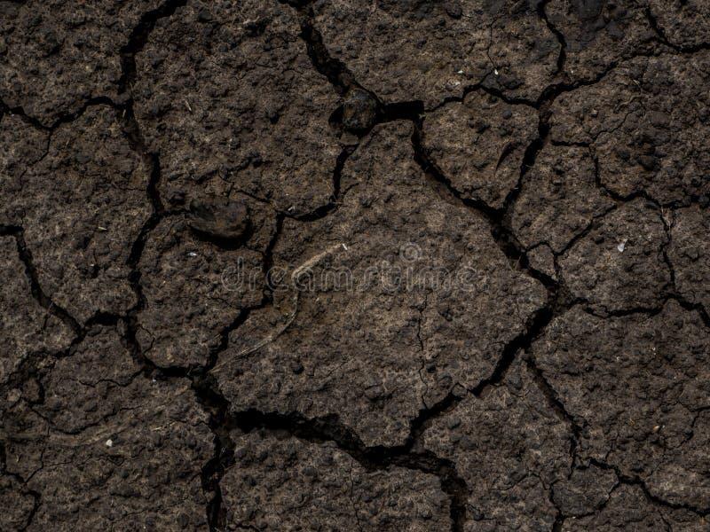 干破裂的地球土壤地面纹理背景 高明的土壤 库存照片