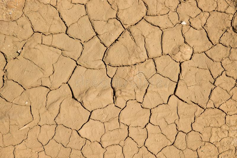 干破裂的地球土壤地面纹理背景 库存图片