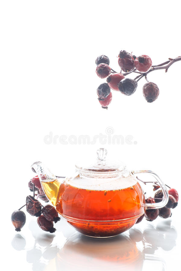 干红色野玫瑰果和茶 免版税库存图片