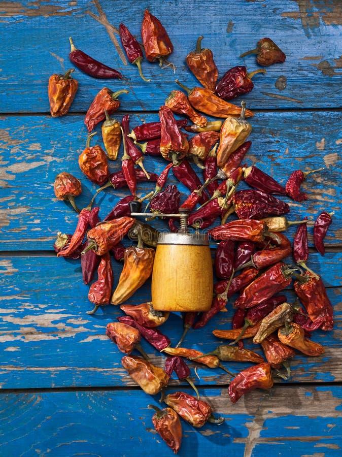 干胡椒和辣研磨机 库存照片