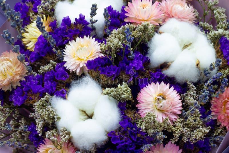 干花花束有棉花和淡紫色花卉背景 库存图片