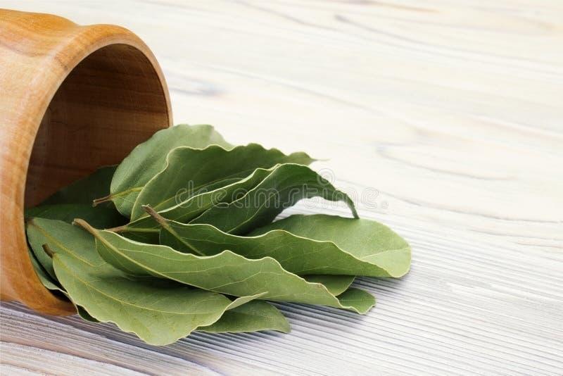 干芳香海湾在一个木碗离开在白色木土气桌 月桂树eco烹调法事务的海湾收获照片  免版税库存图片