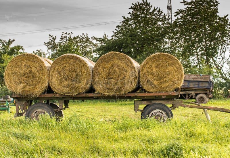 干草卷在牵引车拖车堆了 农业劳动 库存照片