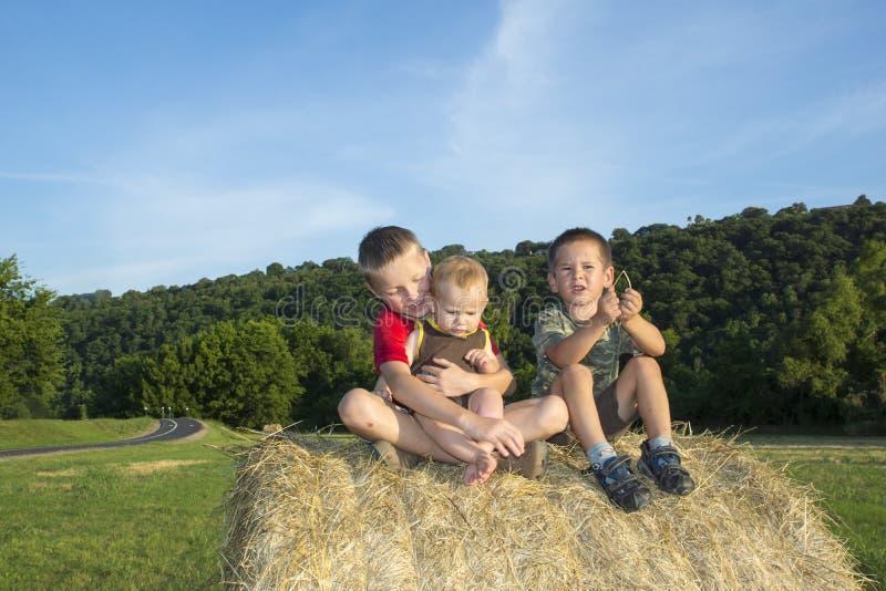 干草卷的三子项在草甸 免版税图库摄影
