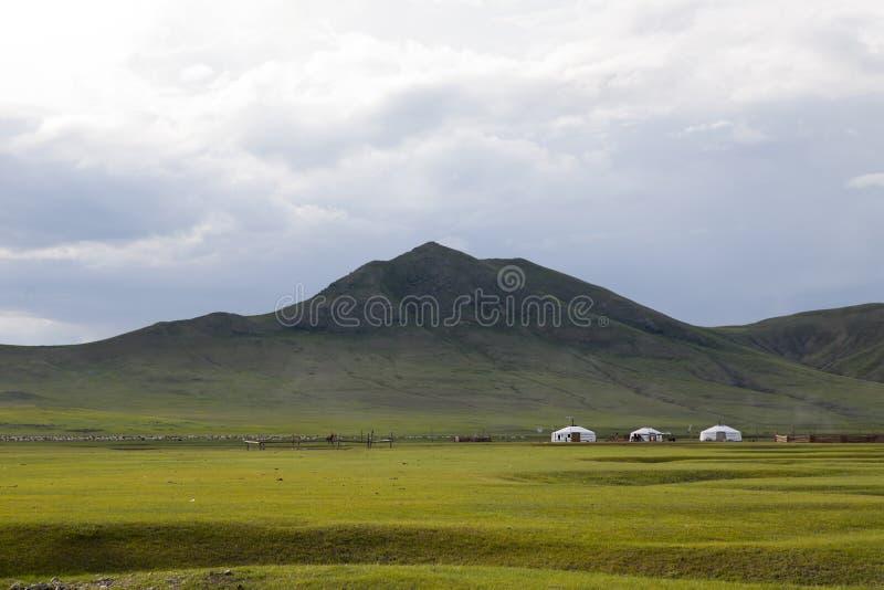 干草原的热尔省 库存图片