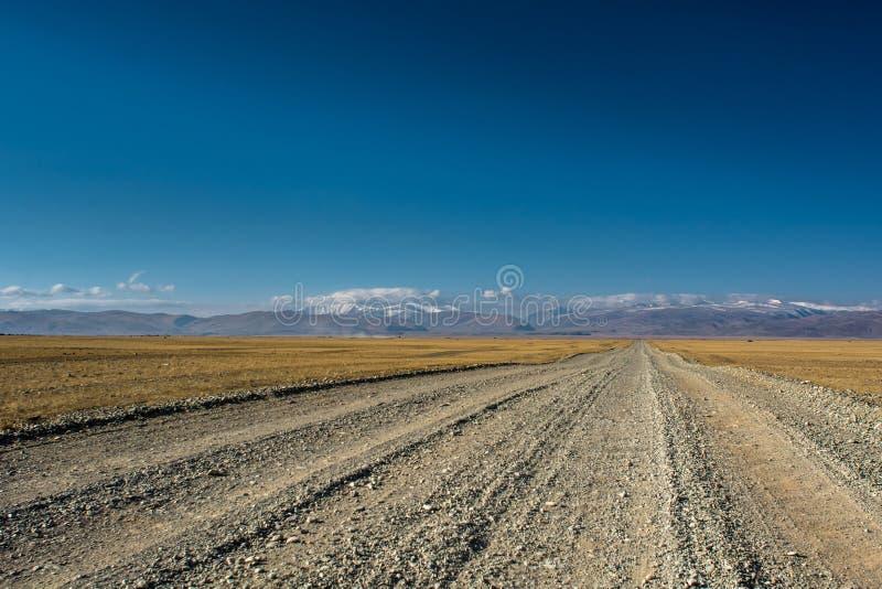 干草原路 库存图片
