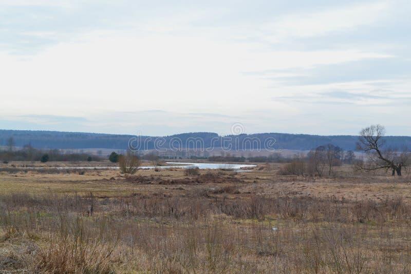 干草和干燥树枝概念 风景秋天 覆盖天空 风景在有河的白俄罗斯 免版税库存照片
