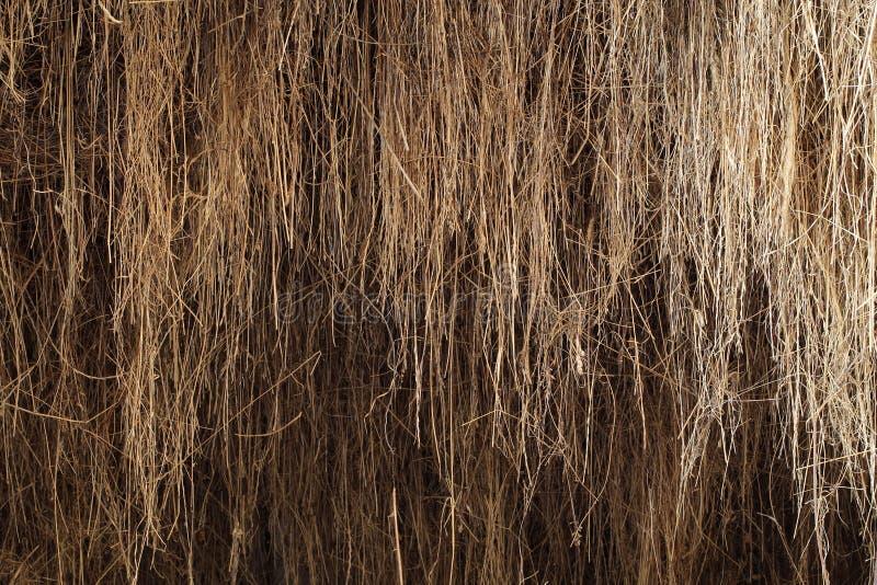 干草在谷仓 库存图片