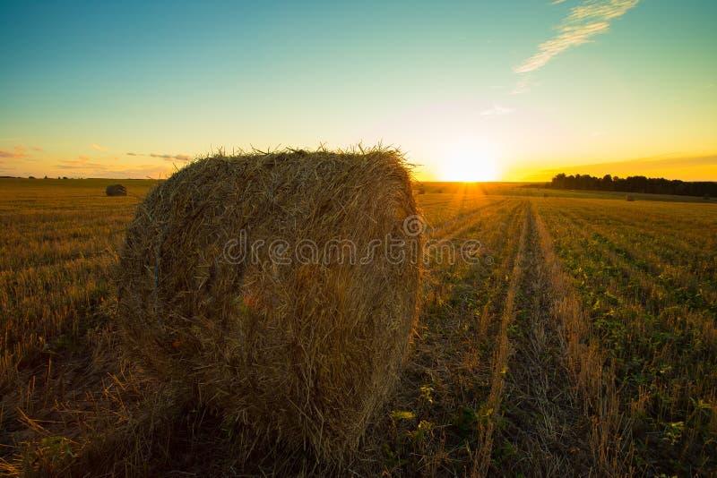 干草在领域的秸杆大包在日落的乡下 免版税库存照片