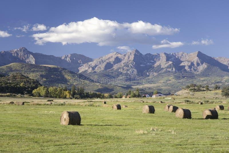 干草堆和绿草在圣胡安山前面 库存图片