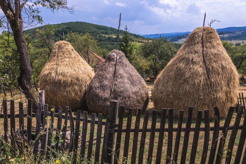 干草堆在塞尔维亚 免版税库存图片