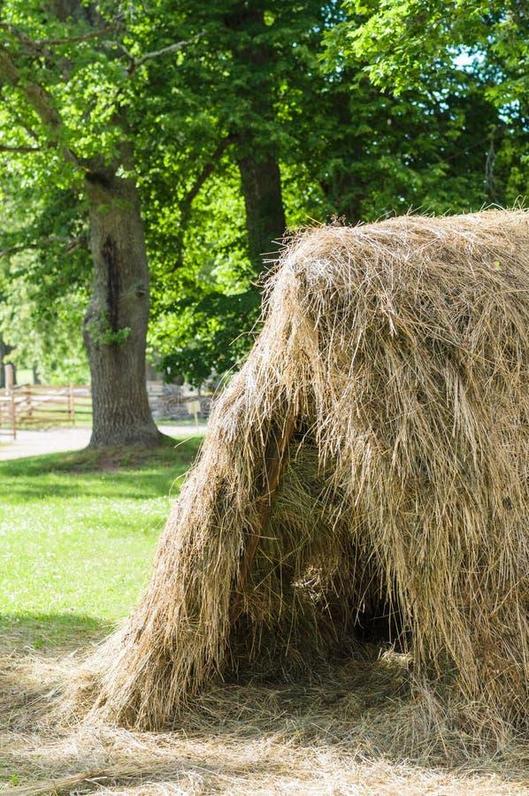 干草堆在晴朗的夏日 库存图片