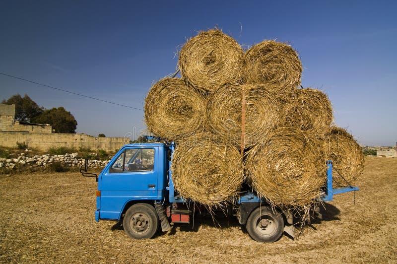 干草小的卡车 库存照片
