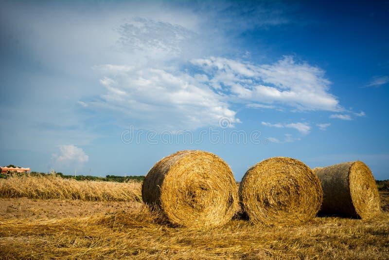干草捆水平的看法在部分地多云蓝天Backgr的 库存照片