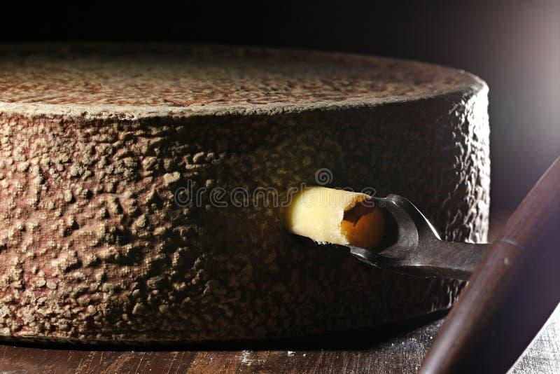 干草牛奶乳酪轮子 免版税库存照片