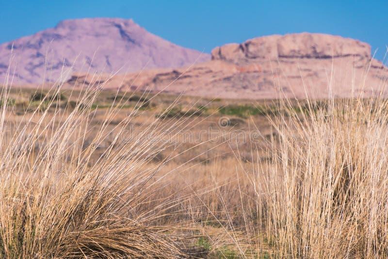 干草阻止摇摆在风以在哈萨克斯坦干草原的石土坎为背景  免版税图库摄影