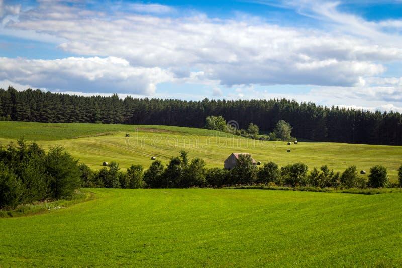 干草领域风景蓝天魁北克加拿大 库存图片