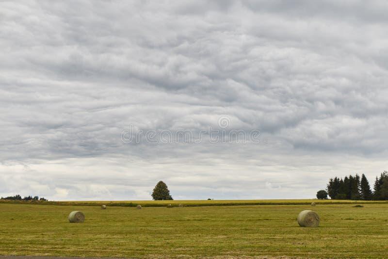 干草领域风景风景视图与美丽的多云天空的 免版税库存照片