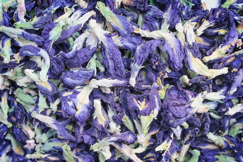 干蝴蝶豌豆花茶或蓝色在背景的clitoria三个纹理顶视图 免版税库存图片