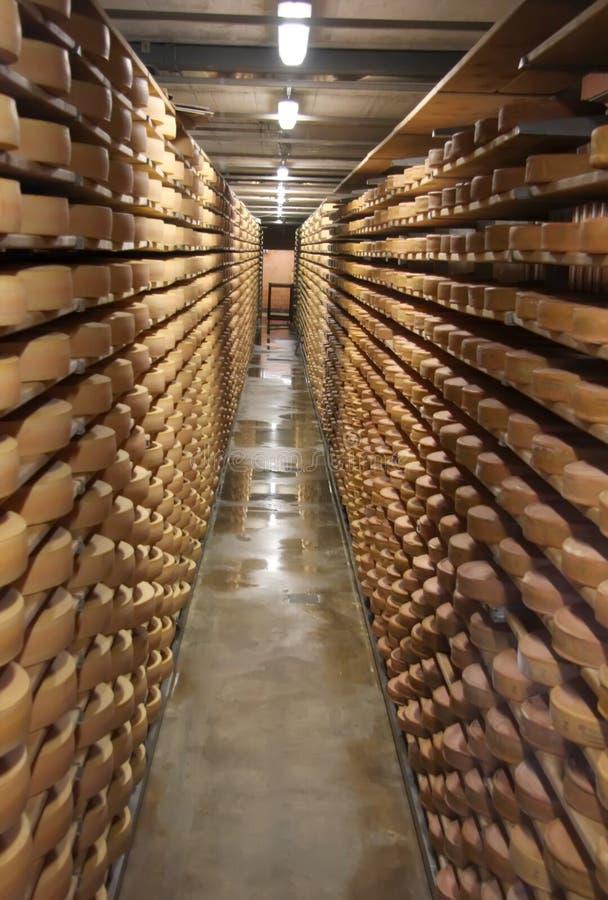 干酪存贮 图库摄影