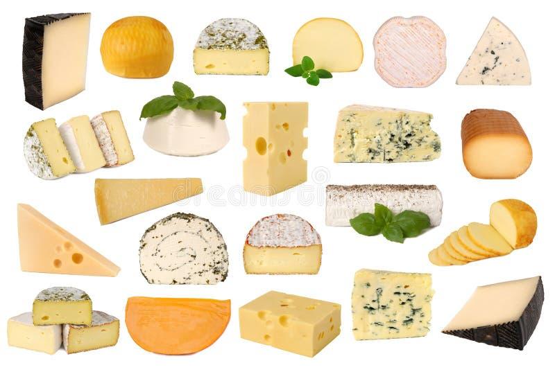 干酪收集 免版税库存照片