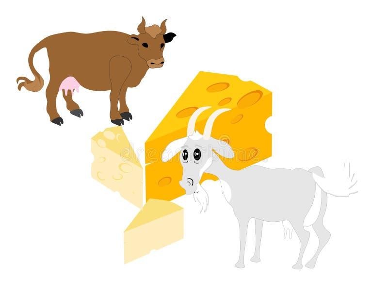 干酪来的地方 向量例证