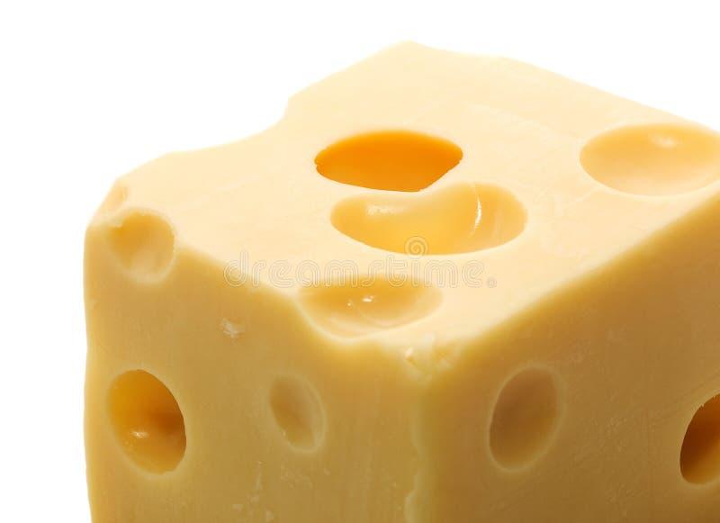 干酪瑞士 免版税库存照片