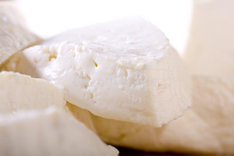 干酪白色 免版税库存图片