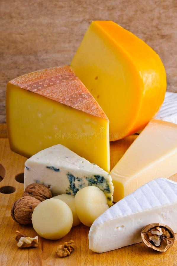 干酪盛肉盘 免版税库存照片