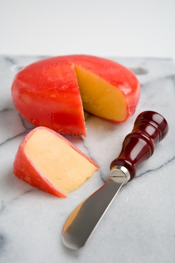 干酪荷兰扁圆形干酪 免版税图库摄影