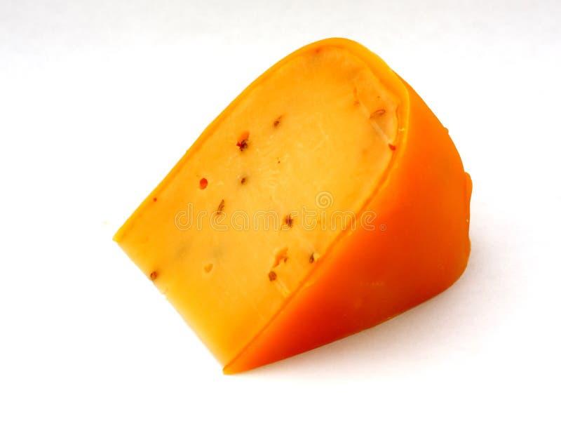 干酪荷兰语 库存照片
