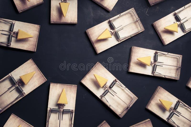 干酪鼠标多个陷井 免版税库存照片