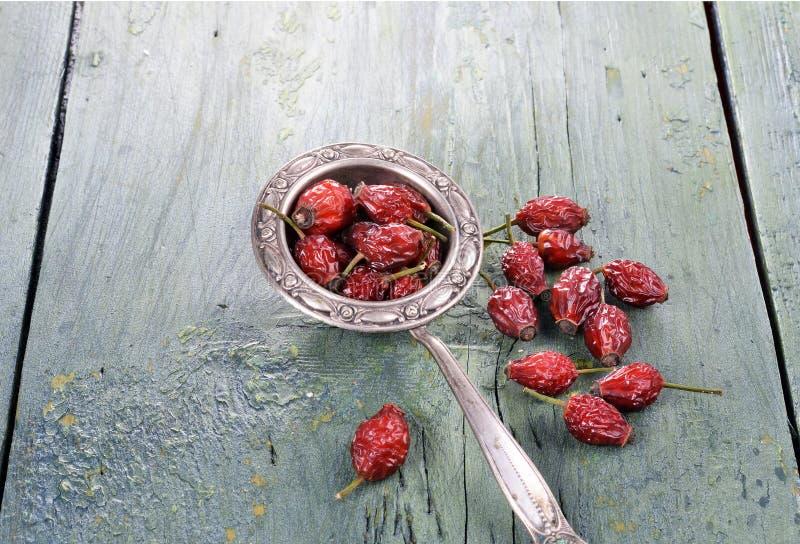 干野玫瑰果,滤茶器,在木背景 库存照片