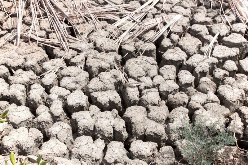 Download 干陆自然地面 库存照片. 图片 包括有 作用, 重点, 干燥, 模式, 聚会所, 地产, 有选择性, 贫瘠 - 72354036