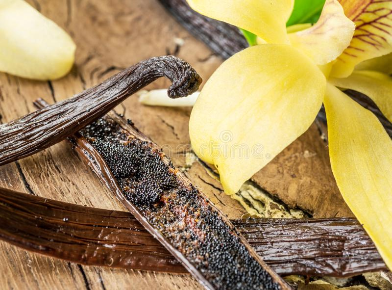 干香草果子和香草兰花在木桌上 免版税库存照片