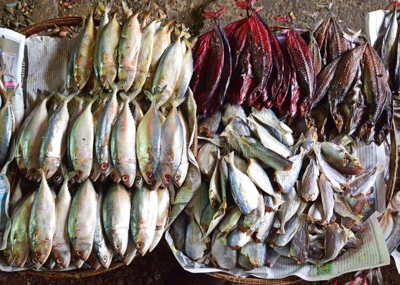 干鱼的不同的类型在显示的待售 免版税库存图片
