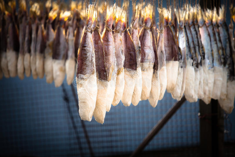 干鱼盐味的星期日 免版税库存图片