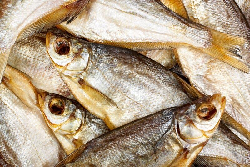 干鱼 库存图片