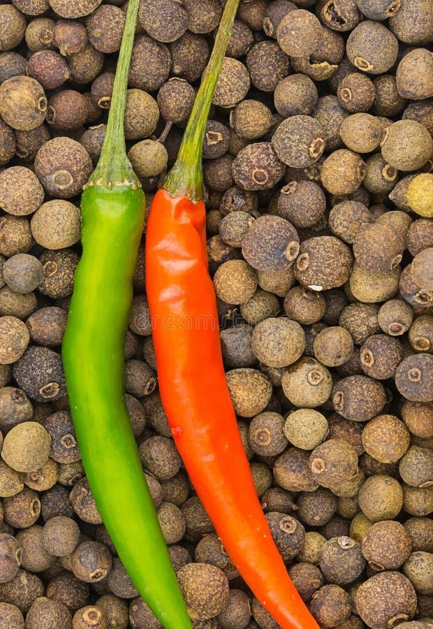 干黑胡椒豌豆干胡椒垂直的荚红色红色辣椒特写镜头背景设计书食谱辣香料 免版税库存照片