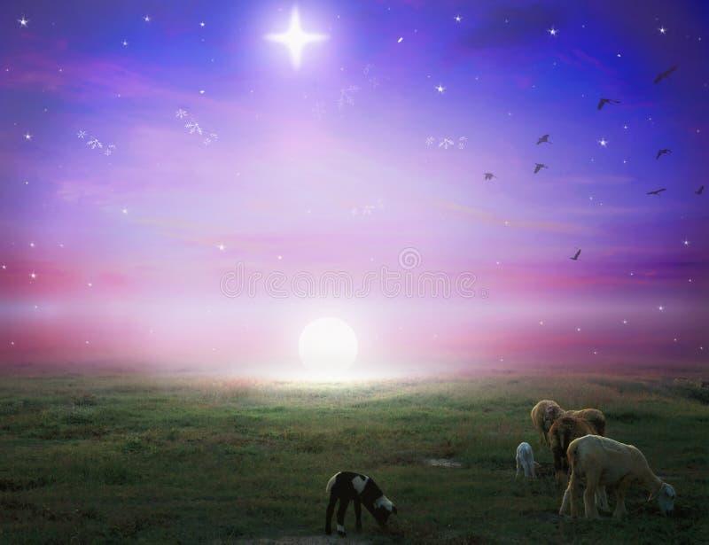 平安夜概念:基督圣诞节星照亮的伯利恒影响了 向量例证