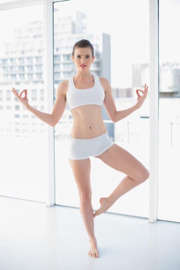 平安的在运动服实践的瑜伽的适合棕色毛发的模型 免版税图库摄影