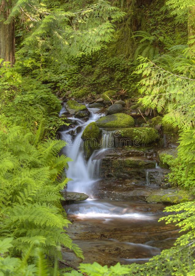 平安的山瀑布 库存照片