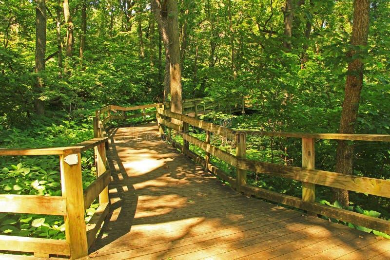 平安的木板走道足迹在Fontenelle森林自然中心 图库摄影