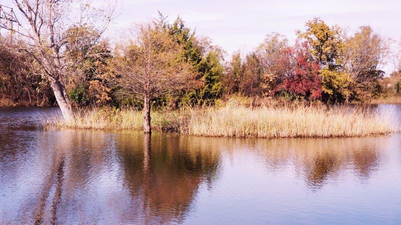 平安的池塘 库存照片