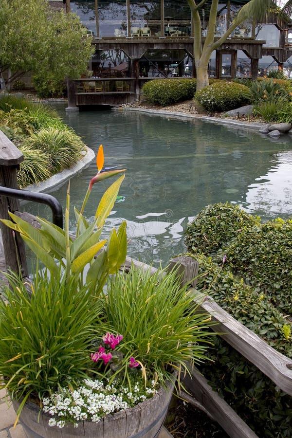 平安的池塘 免版税图库摄影