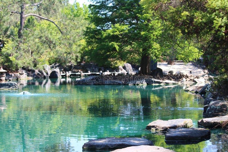 平安的湖 免版税库存照片