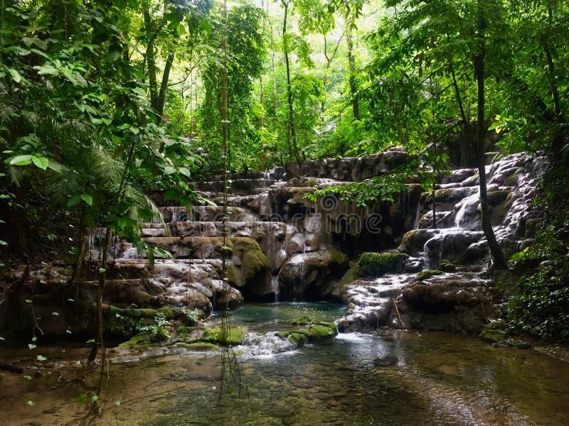 平安的瀑布在国家公园帕伦克 免版税库存图片