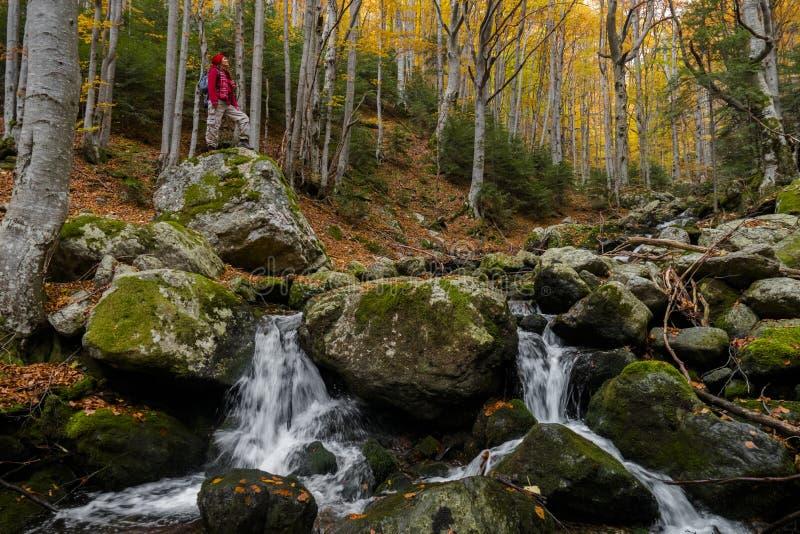 平安的秋季天堂 库存照片