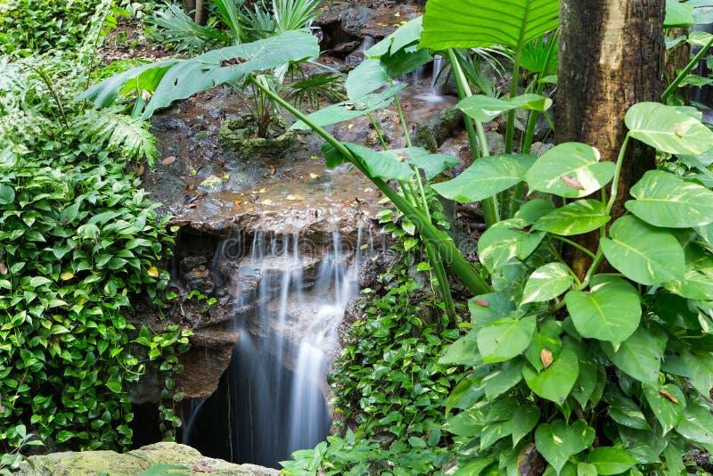 平安的雨林瀑布 免版税库存照片