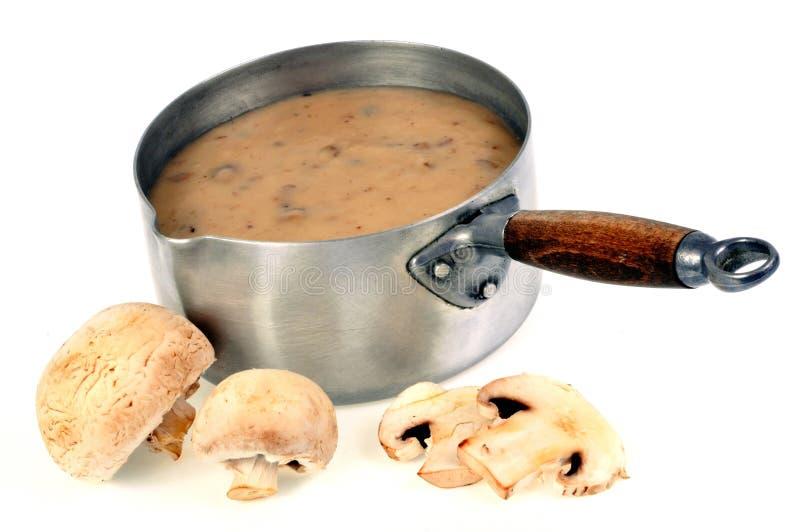 平底锅蘑菇汤 库存图片